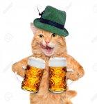 beercat.jpg